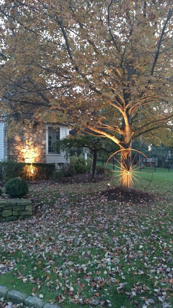 Landscape Lighting Weston